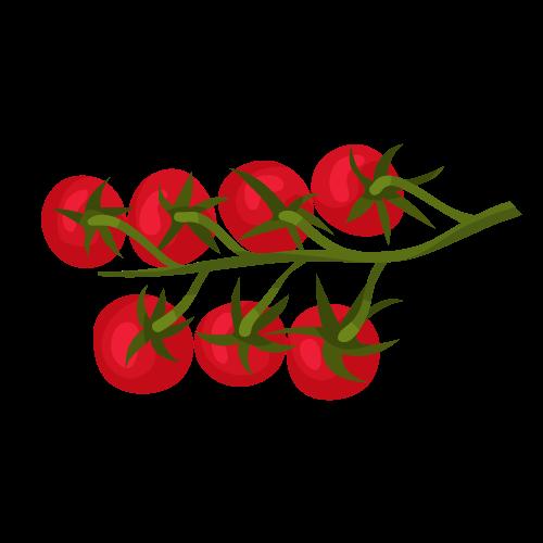 Illustration tomate
