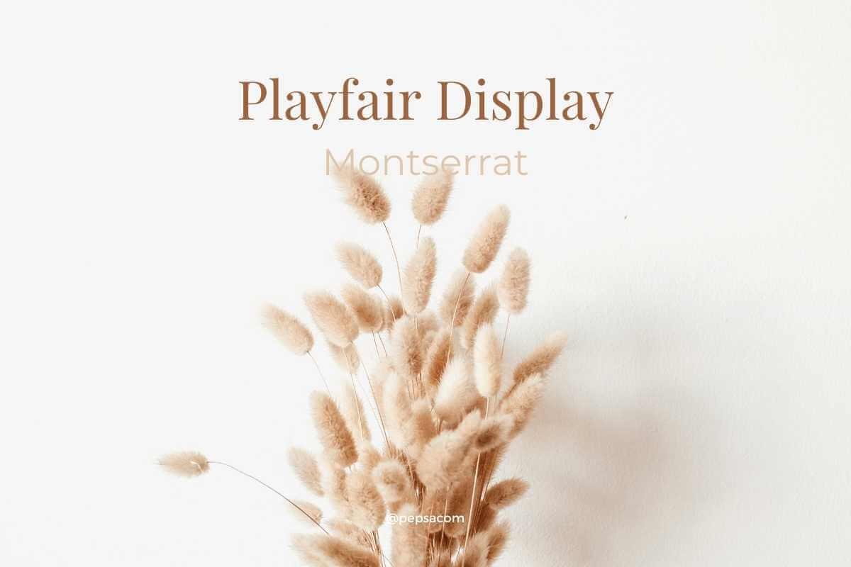 Playfair dysplay typographie canva