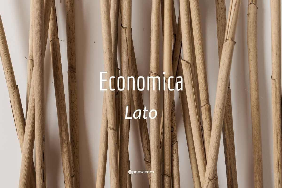 economica typographie