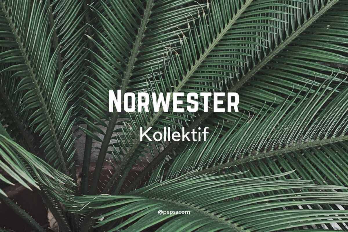 norwester typographie