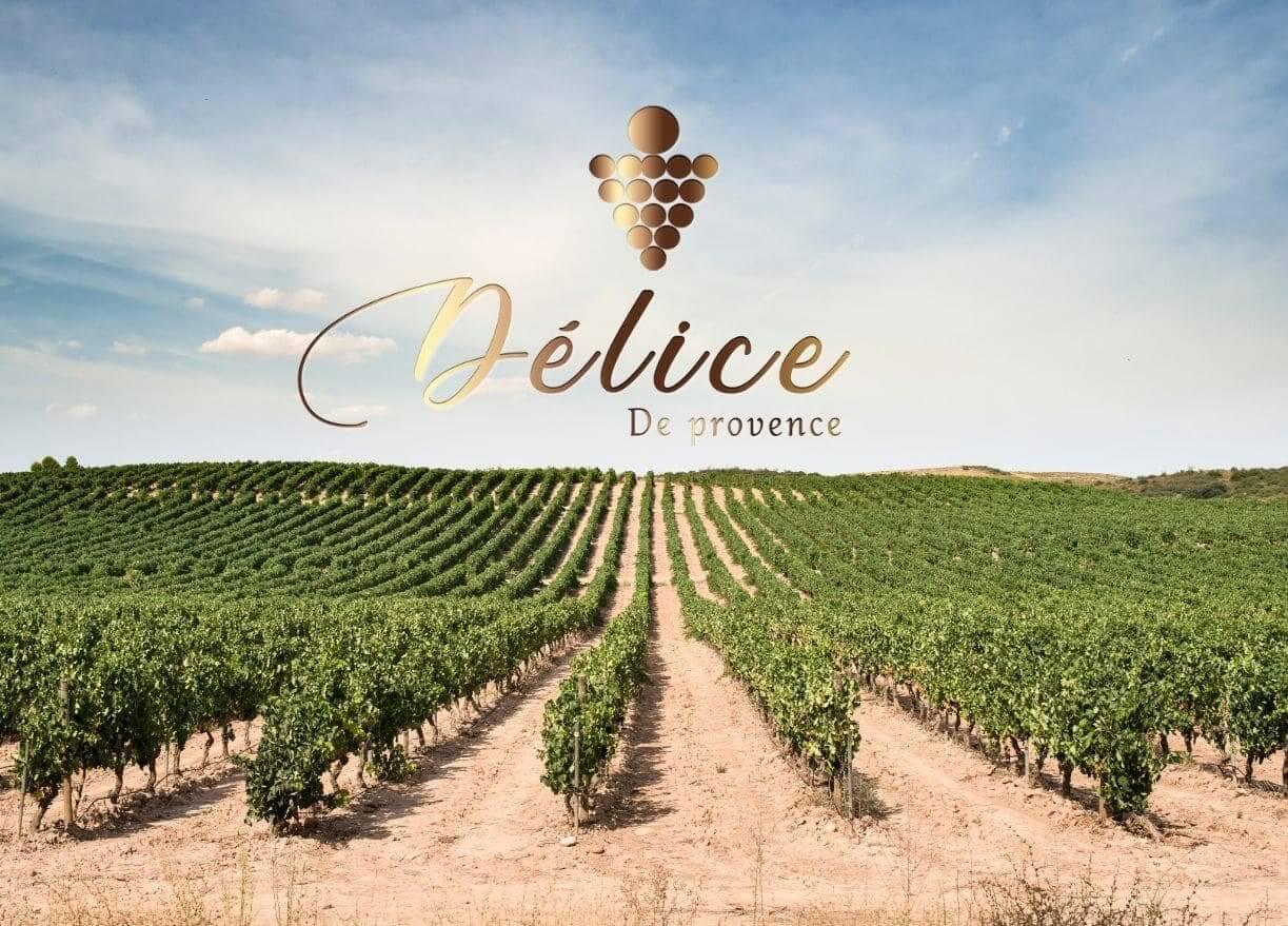 Bannière logo pour le vin